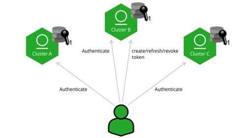 Cross instance authentication